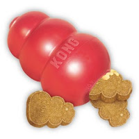 Kong treat dispensing toy