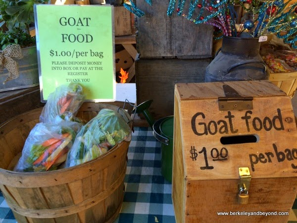 goat food for purchase at Avila Valley Barn in San Luis Obispo, California