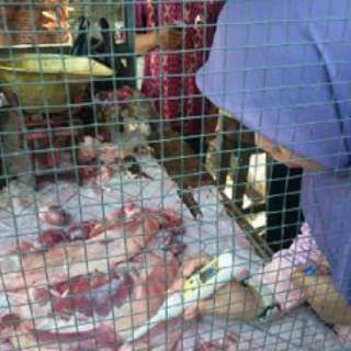 Awasi Peredaran Daging, Tim Gabungan Sidak Pasar