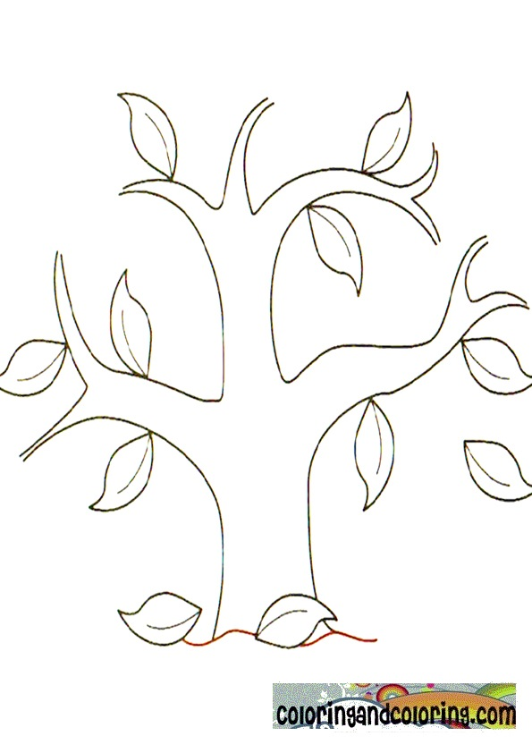 autumn tree coloring sheets coloring and coloring pages