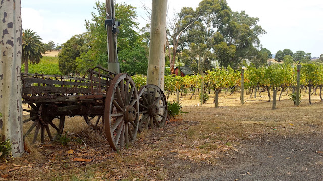 Fergusson Winery, Dixon's Creek