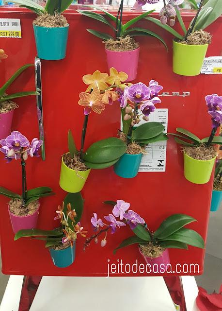 mini-orquideas-em-vasos-com-ima-pra-geladeira