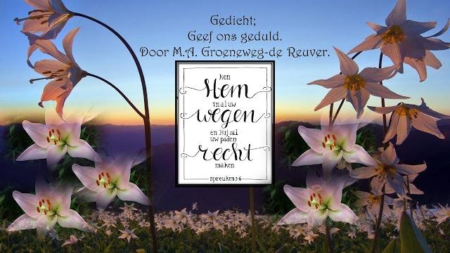 http://www.imagenetz.de/fda275299/Geef-ons-geduld-1.ppsx.html