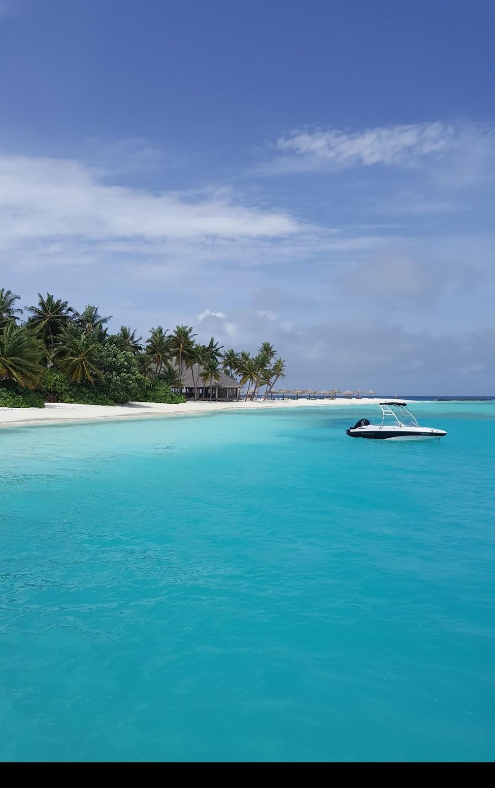 Etiket: maldivler