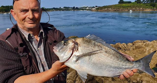 Pêche multi-espèces