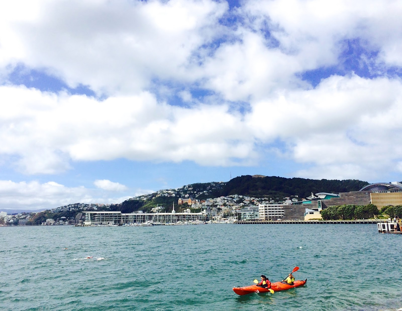 Wellington Guide + Food Hotspots