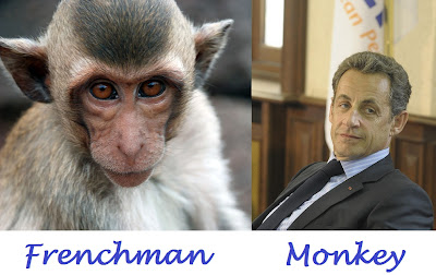 Comparison of a Frenchman and a monkey
