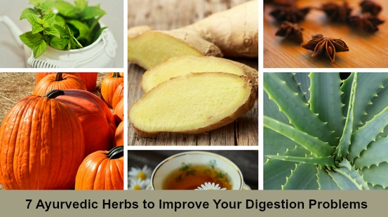 7 Ayurvedic Herbs to Improve Your Digestion Problems