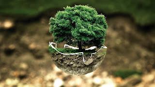 Environment media | Content PR | Media relations