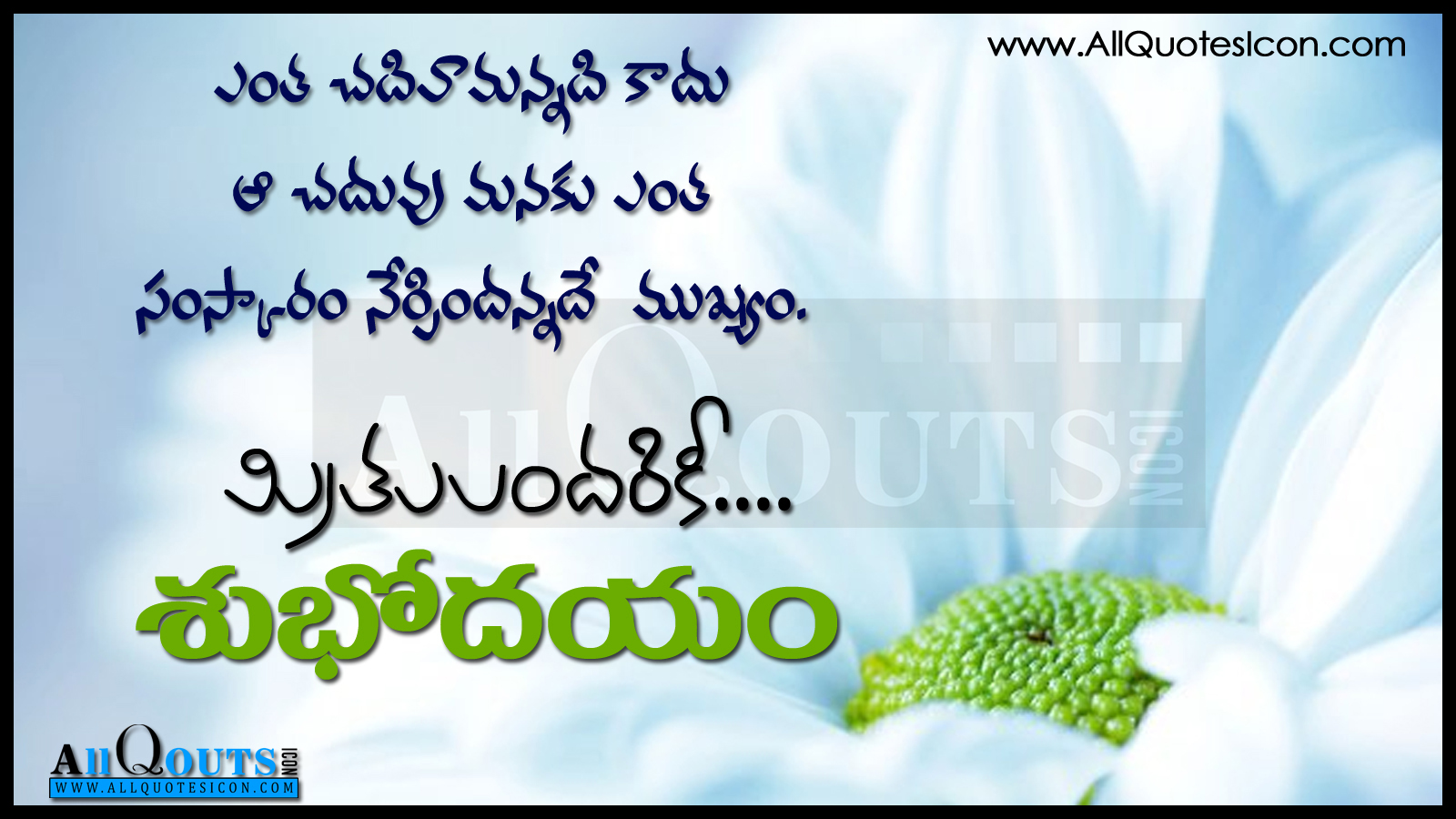 Good Morning Telugu Quotes Hd Wallopapers Best Good Morning Wishes