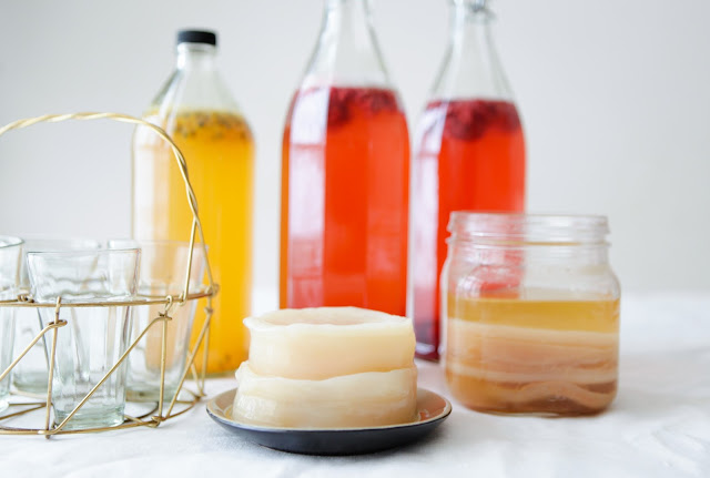 How to make Kombucha Tea - First Fermentation