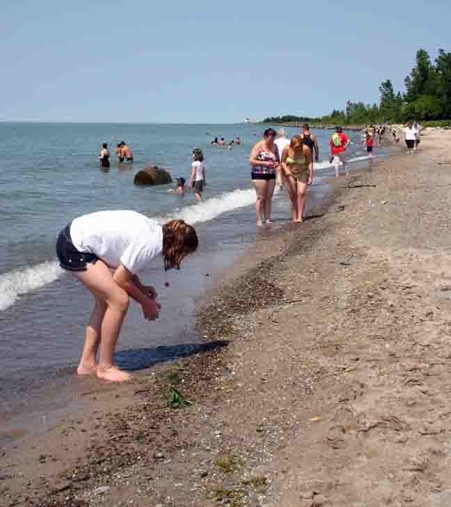 Walnut Beach Ashtabula Oh