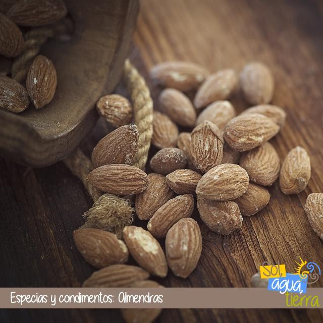 Especias y condimentos: Almendras, prunus dulcis. Uso en cocina
