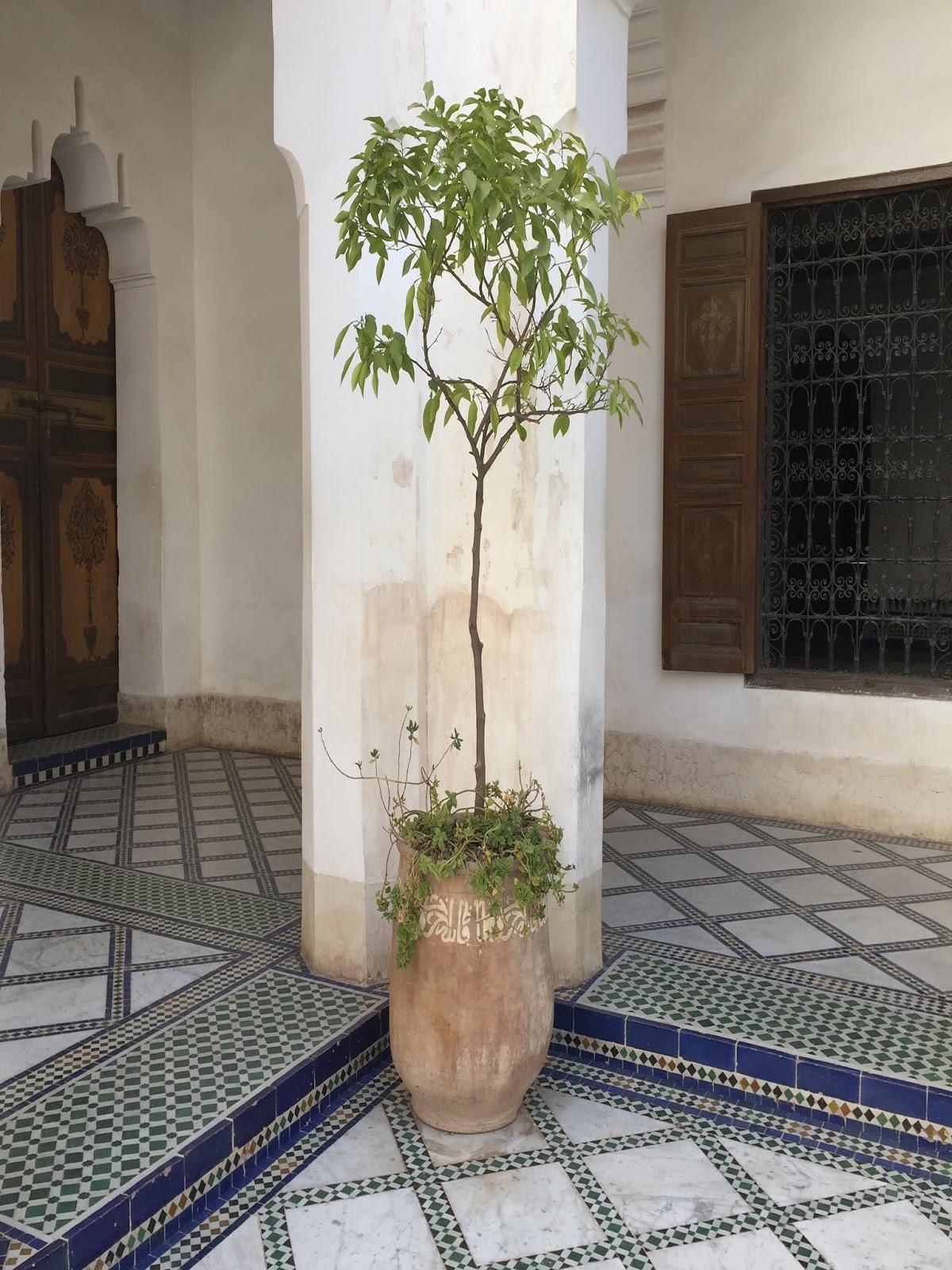 visiter le palais bahia à marrakech