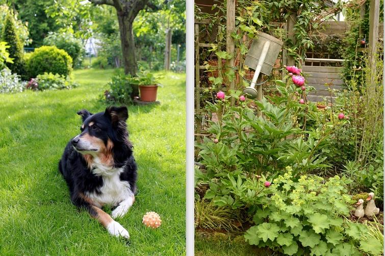 Reihenhaus mit ländlichem Garten