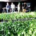 SEIS MIL PLANTONES ENTREGA LA GERENCIA REGIONAL DE AGRICULTURA A CEPROVASC