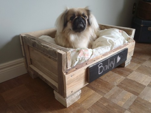 This dog bed is made from recycled pallets and is the perfect resting place for your sweet pup