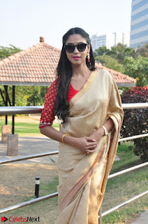 Angana Roy in Silk Saree at Teaching Tree Carnival .xyz 022.JPG