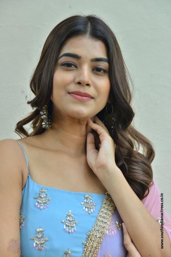 Yamini Bhaskar Bhale Manchi Chowka Beram Movie Success Meet 8