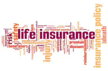 Life Insurance Policy Rates