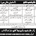 Nisar Shaheed College Risalpur Cantt Nowshera Jobs