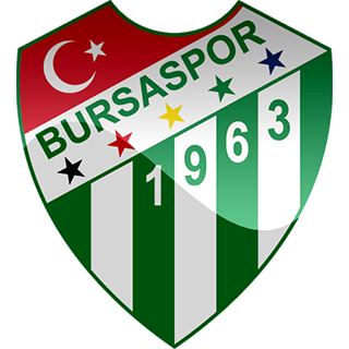 bursaspor hd dls fts logo