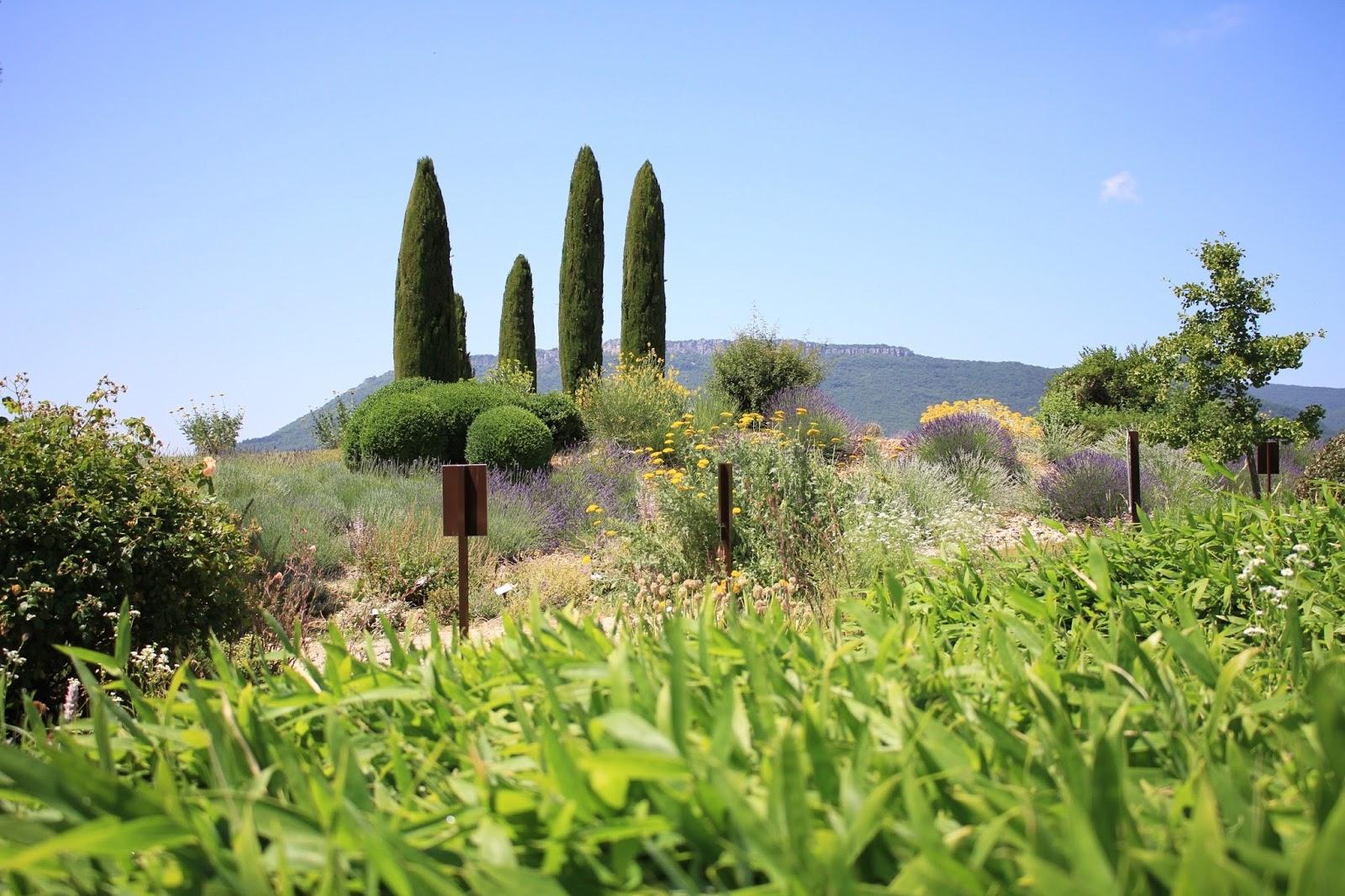 jardin botanique sanoflore