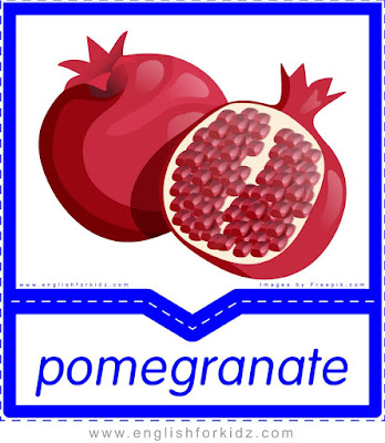 Pomegranate - English flashcards for the fruits, vegetables and berries topic