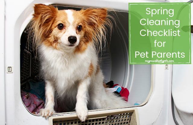 Spring Cleaning Checklist For Pet Parents Pawsitively Pets