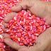 Governo do Estado distribui sementes com 64 mil agricultores paraibanos