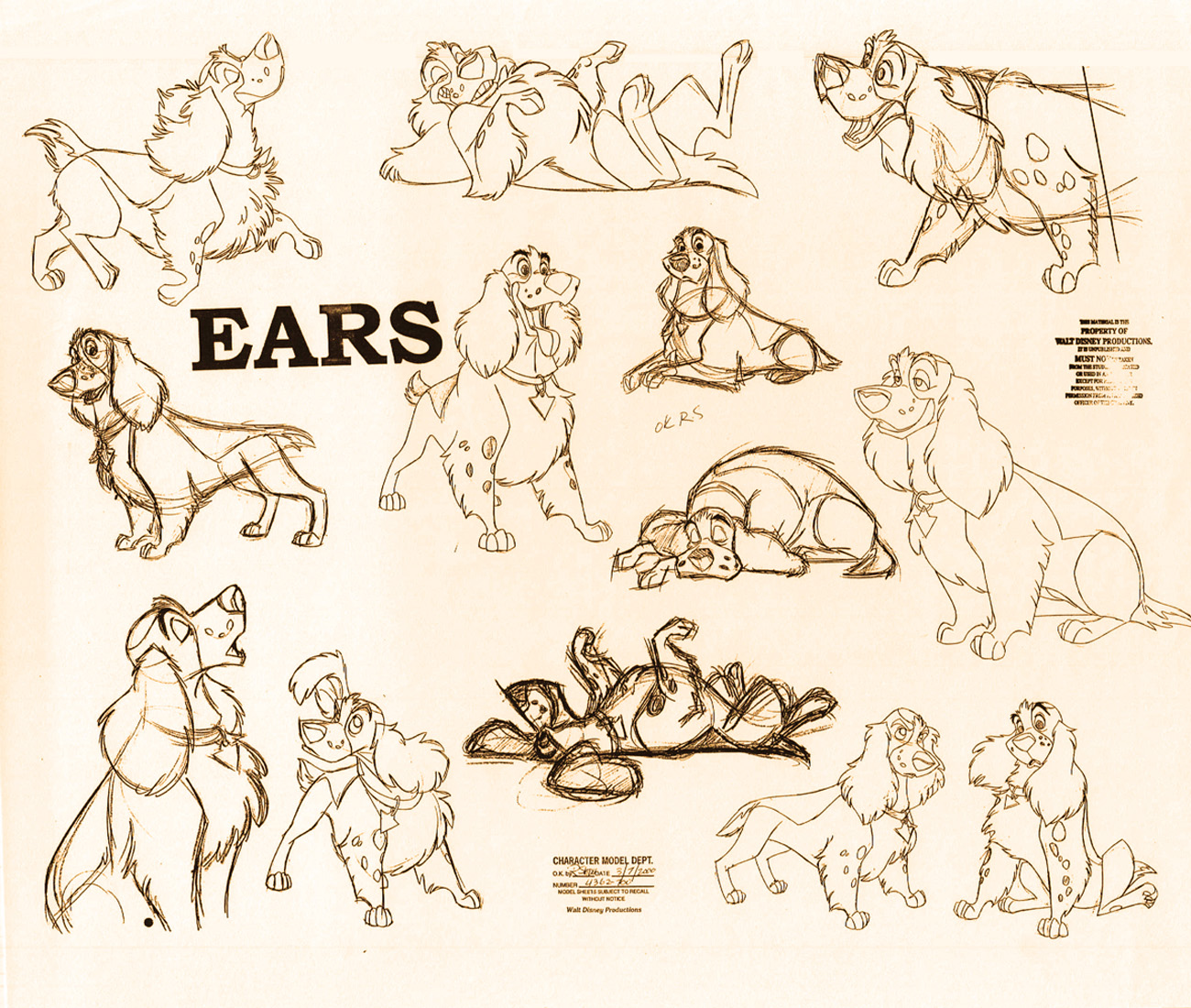 These designs were for a earlier script with different dog lead characters ears was one of them i would have loved to see him animated but it was not to