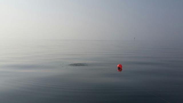 Poiju täysin tyynellä merenpinnalla