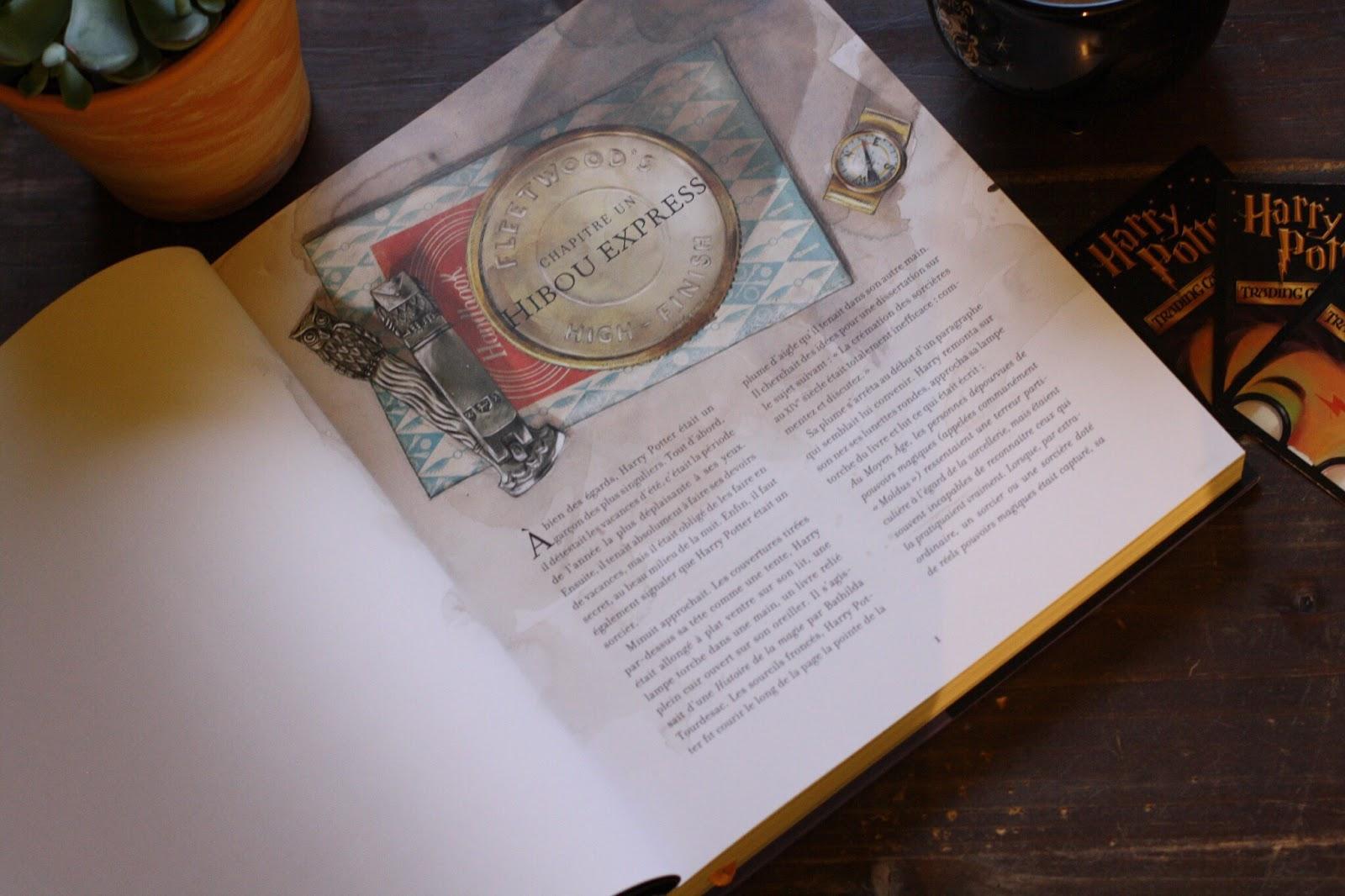 Harry Potter Et Le Prisonnier D Azkaban Edition Illustree