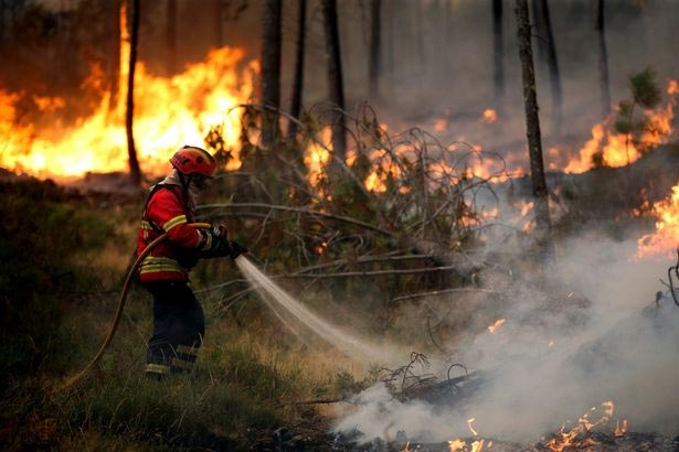 Wild forest fire causes evacuation of hundreds of people in Portugal