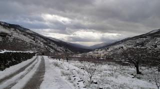 Valle del Jerte, un paisaje cultivado. Paisaje invernal.