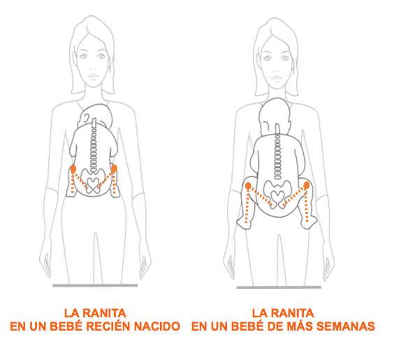 Postura ergonómica del bebé en forma de ranita