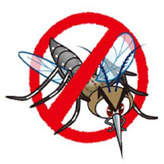 Gejala, Penyebab, dan Cara Mencegah Demam Berdarah Dengue (DBD)
