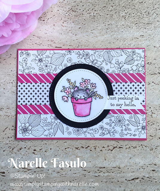 Pretty Kitty - Inside the Lines DSP - Simply Stamping with Narelle - available here - https://www3.stampinup.com/ecweb/default.aspx?dbwsdemoid=4008228