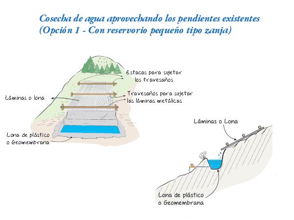 Técnica de recogida de agua de lluvia aprovechando la pendiente natural del terreno