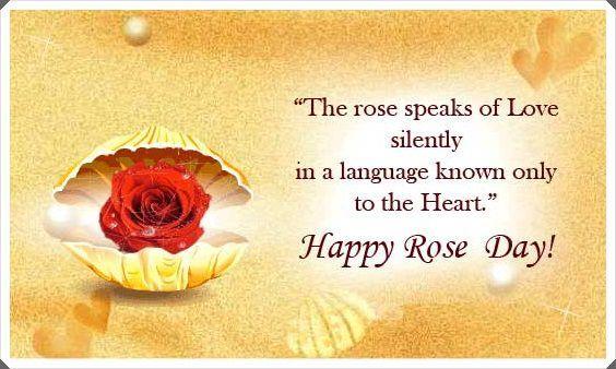 Rose Day 2