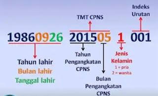 21.477 CPNS Belum Dapat NIP, Kemenpan RB Paparkan Nasib Mereka