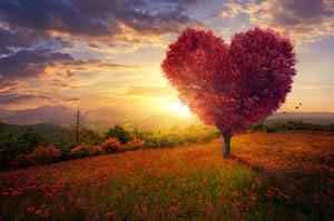 Bersabar Dalam Tulusnya Cinta