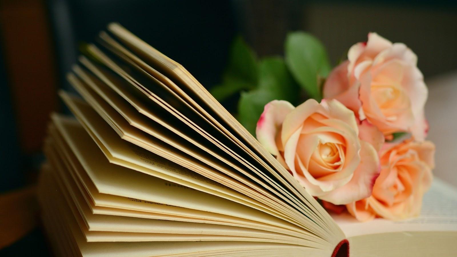 Kwiecień w książkach, czyli podsumowanie miesiąca