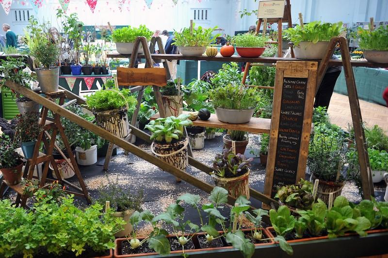 urban garden show el encanto de los muy peque os