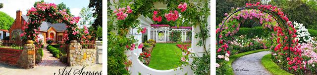 Cvetni kutak Fortuna je pravo mesto za vas!