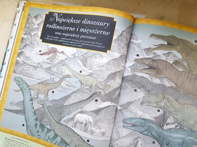 Najwyższa góra , najgłębszy ocean - Nasza Księgarnia - książeczki dla dzieci