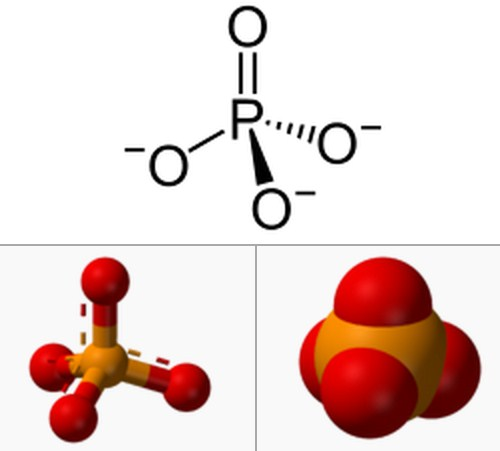 Rumus Kimia Asam Fosfat