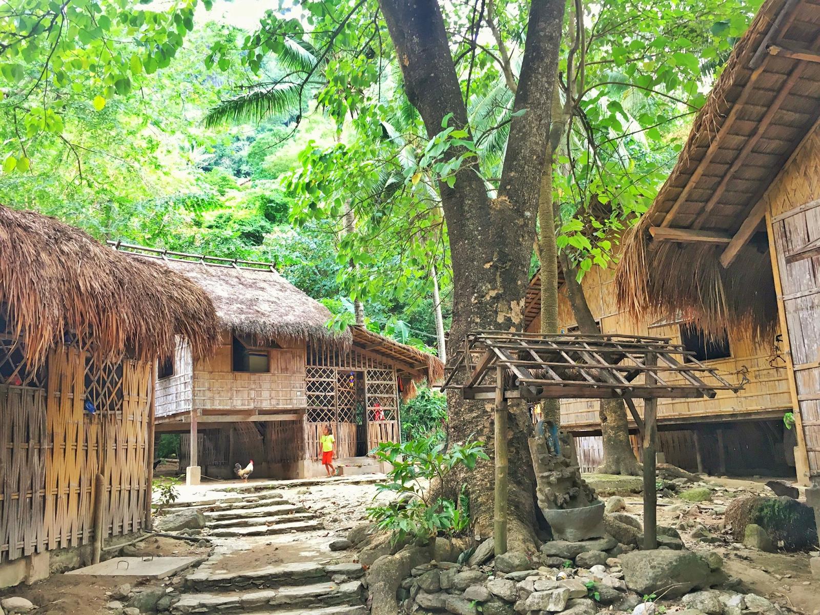 mangyan village brgy talipanan puerto galera