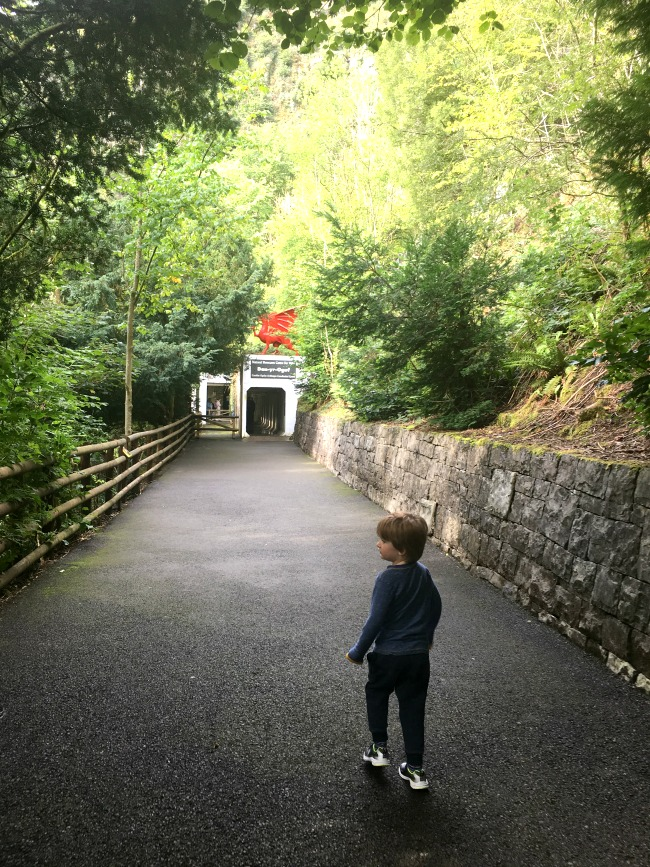 boy-walking-to-entrance-of-cave-at-dan-yr-ogof