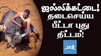 PETA's next plan against Jallikattu 2018